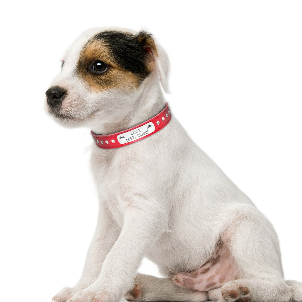 Pet Personalized Leather Collar